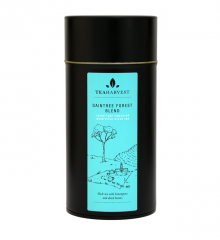 Daintree Forest Blend Canister